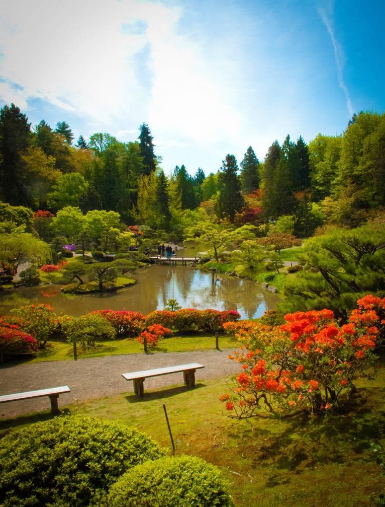 Японский сад в Сиэтле, фотопрогулка