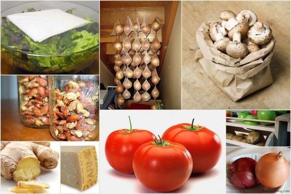 ПАМЯТКА. Правильное хранение продуктов питания