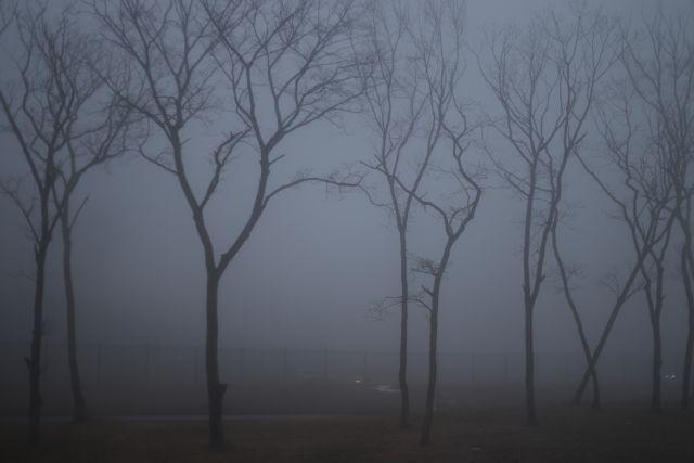 МЧС предупредило москвичей о тумане и гололедице