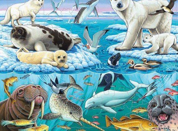 Детям о животных. Животный мир нашей планеты (2)