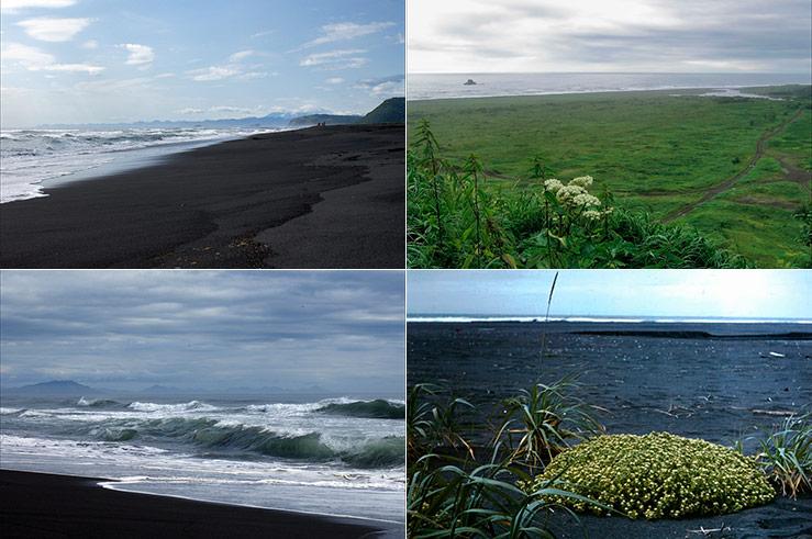 Вид могучего и древнего океана, обрамлённого необычным чёрным вулканическим песком — незабываемое зрелище