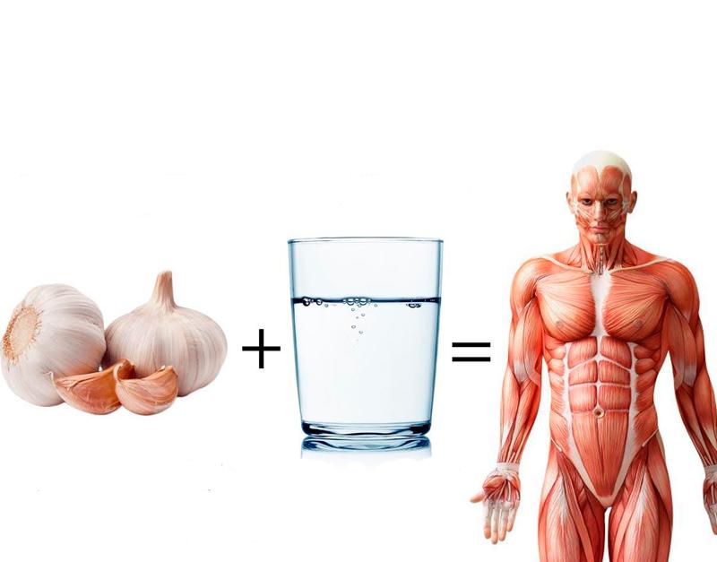 Чесночная вода: Утренний ритуал здоровья