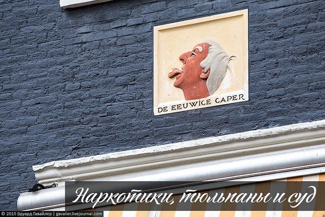 Наркотики, тюльпаны и суд. А какие у вас ассоциации, когда вы слышите Амстердам или Гаага?