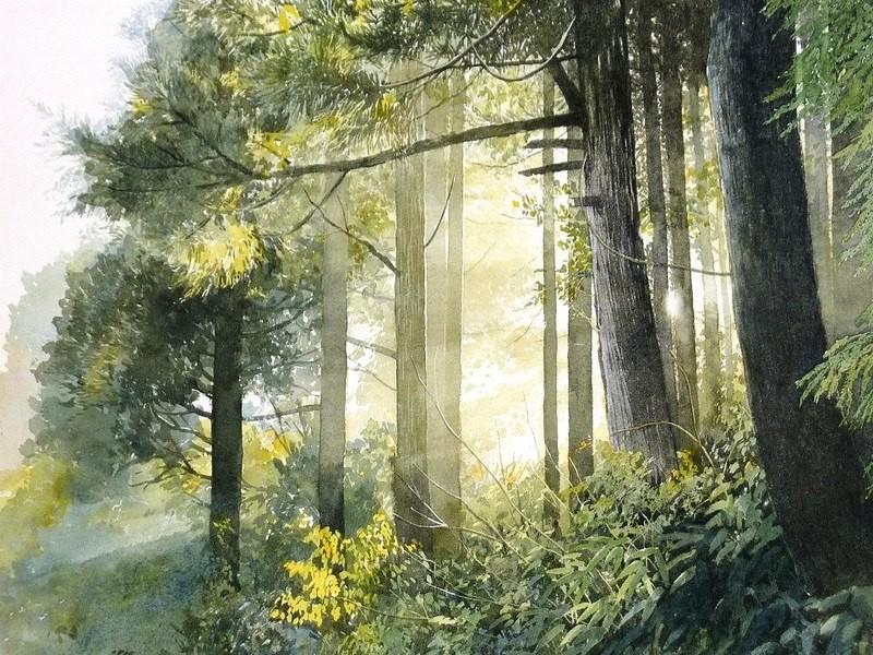 Когда рисуешь ветвь, нужно слышать дыхание ветра. Невероятные акварели!