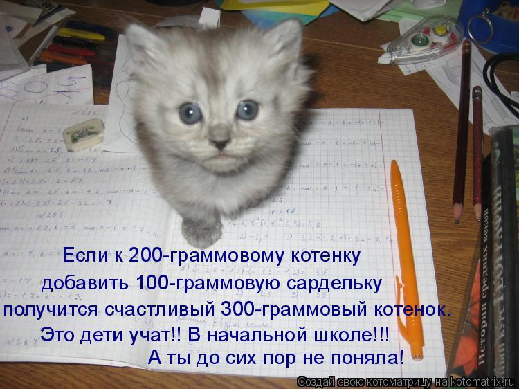 Котоматрица: Если к 200-граммовому котенку добавить 100-граммовую сардельку получится счастливый 300-граммовый котенок. Это дети учат!! В начальной школе!!! А