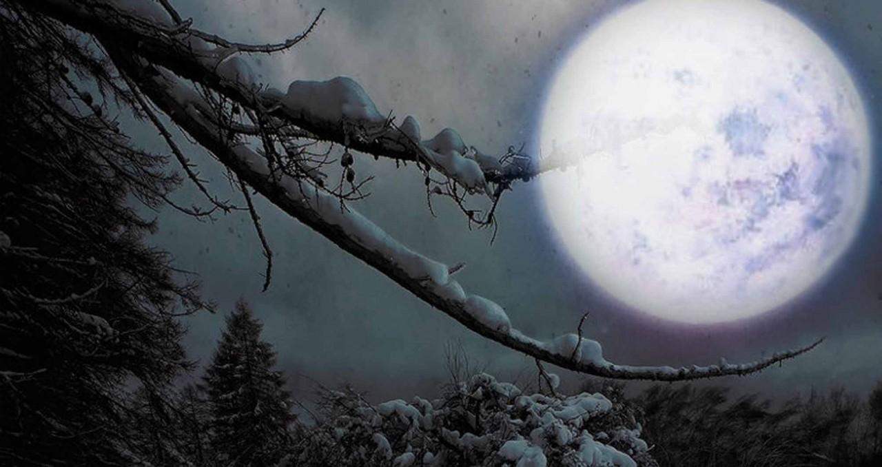 Лунный посевной календарь с 26.02.2018 года по 04.03.2018 года