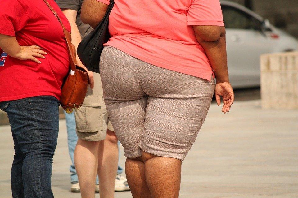 Эксперты назвали основные источники накопления висцерального жира