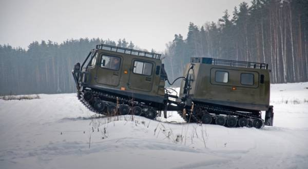 """""""Лоси"""" могут помочь работе и службе в Арктике"""