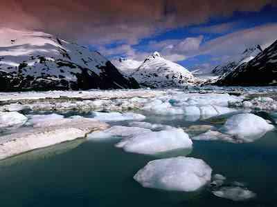 Загадочный и странный случай на Аляске: 'что-то большое движется там