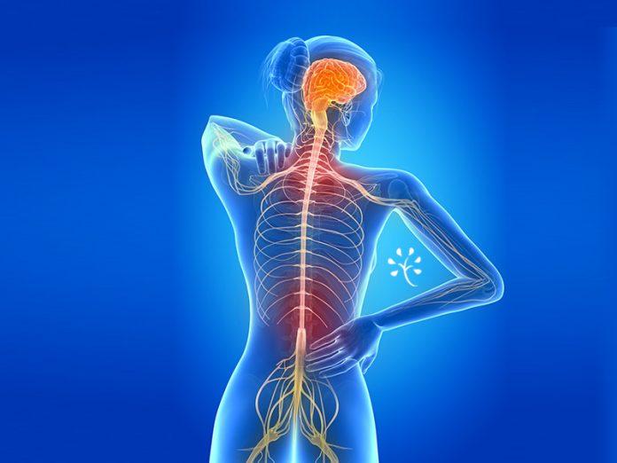 Доктор объясняет, как мгновенно устранить тревогу, используя ваш блуждающий нерв