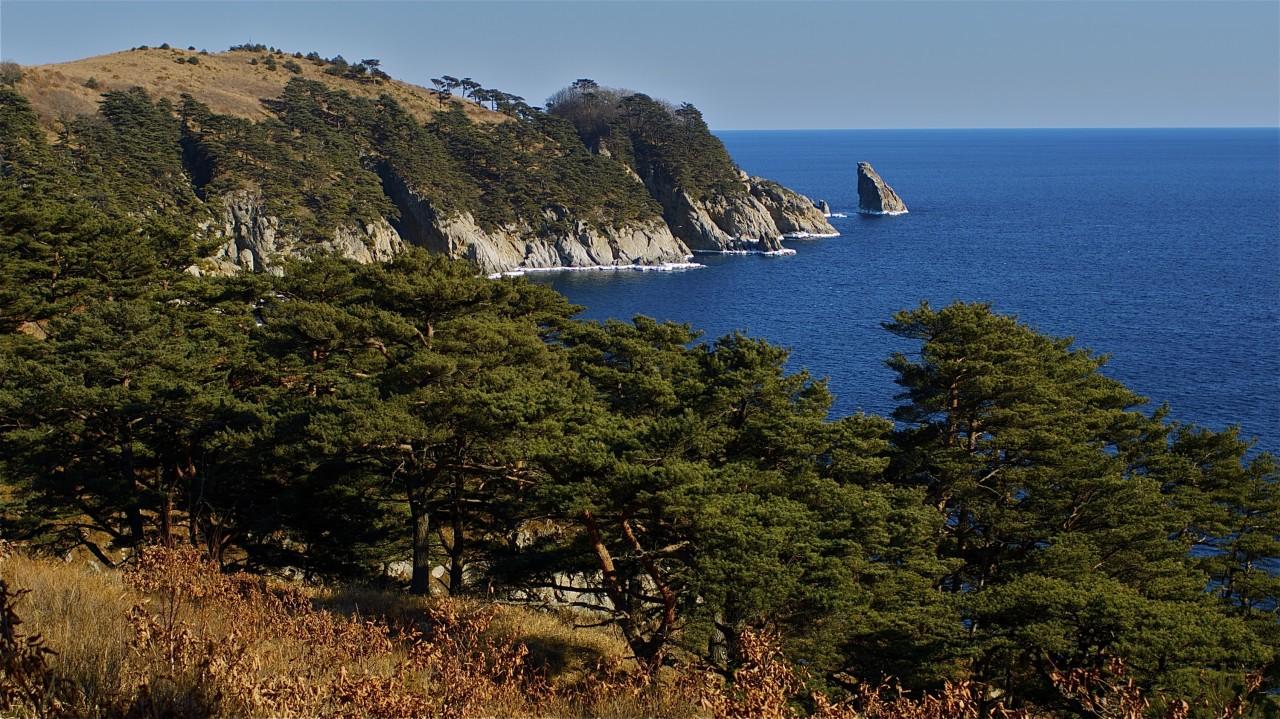Побережье Японского моря /Владивосток курорт, море, отпуск, россия
