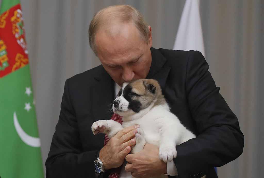 Русская служба Би-би-си вспоминает, каких животных  дарили Путину.