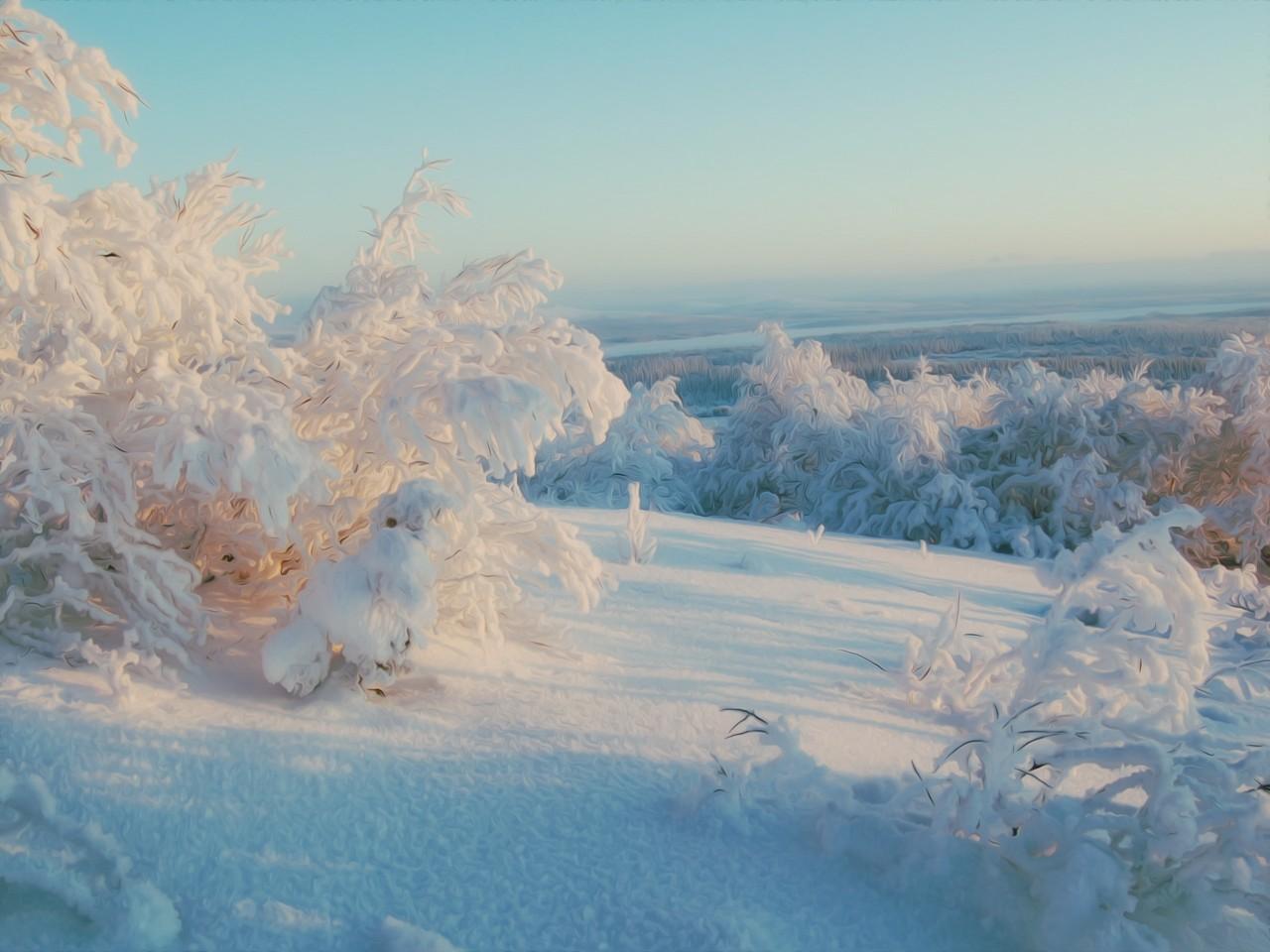 1366x768 зима, солнечный, свет, снег, небо, горизонт, деревь…