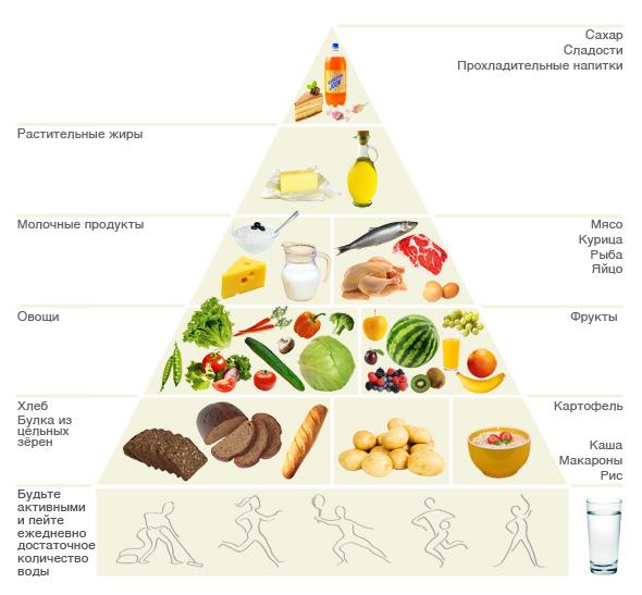 Пирамида нашего питания