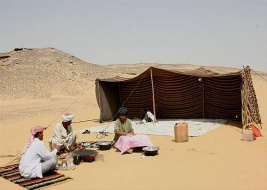 Закон пустыни