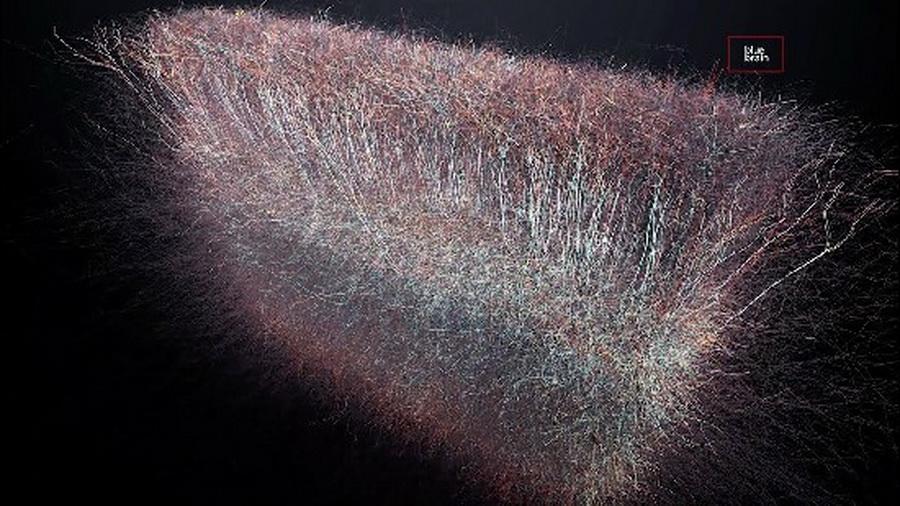 Сенсационное открытие: в нашем мозгу обнаружена Многомерная Вселенная