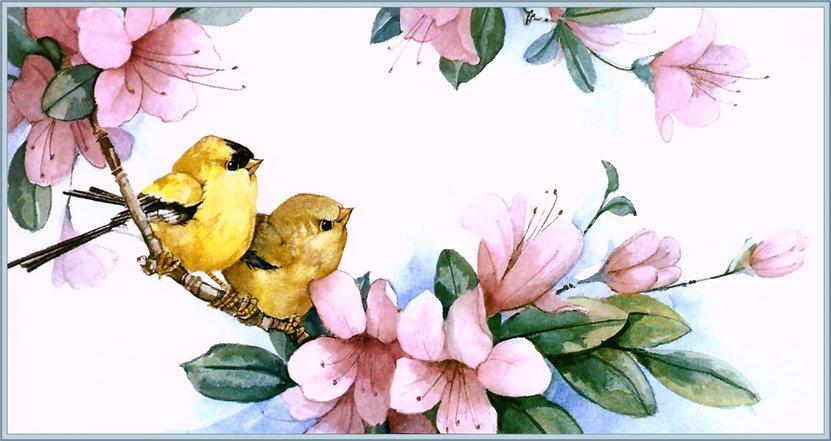 эскизы красивых птиц с цветами термобелья для девочек