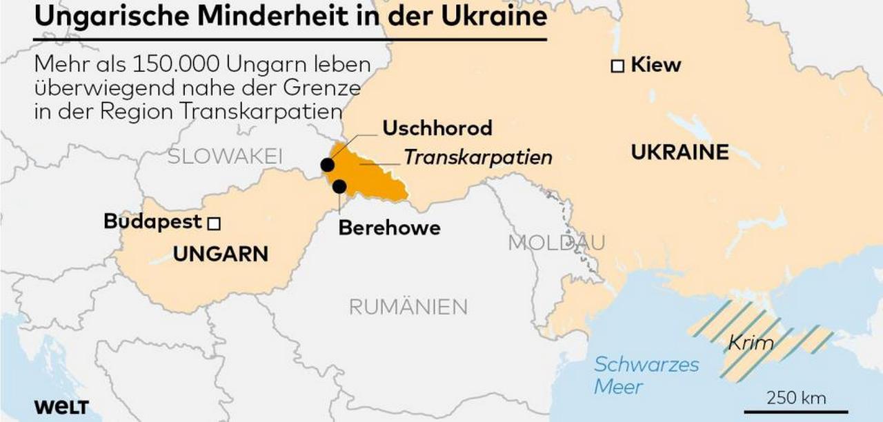 Венгрия просит ЕС и НАТО проверить происходящее на Украине. Die Welt, Германия