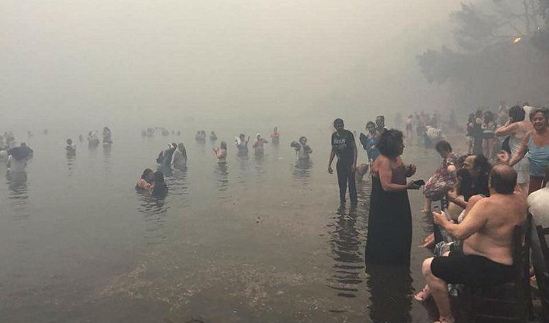 «Наши спины горели, мы нырнули в воду»: от лесных пожаров в Греции погибли 50 человек