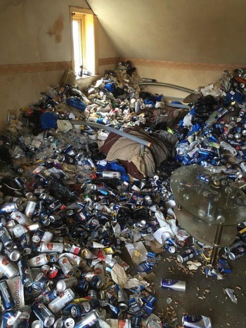 Это не жилец, а пивной свинодемон! банки, в мире, люди, мусор, пиво, свинья