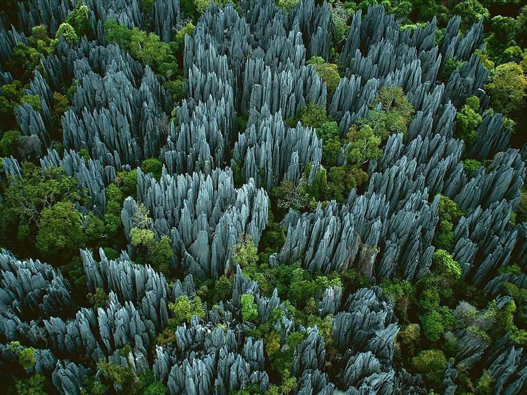 UZf4nDO Каменный лес на Мадагаскаре