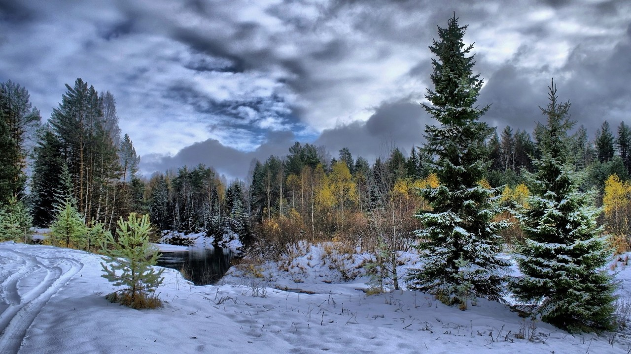 1152x864 снег, деревья, Зима, река, лес обои на рабочий стол 16173