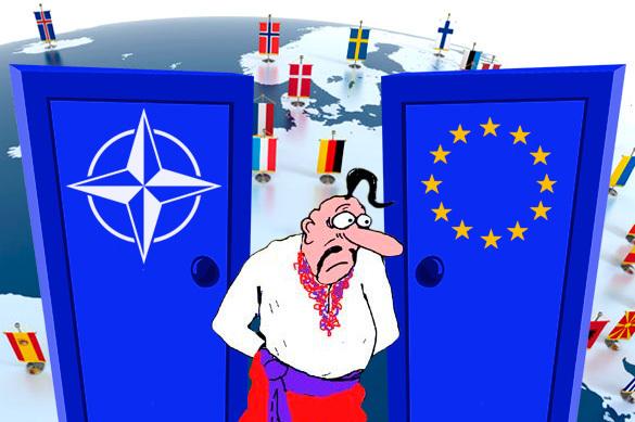 НАТО — Украина: ее в дверь, она в окно