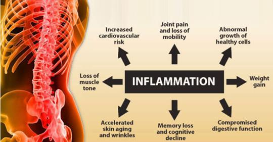 9 эффективных способов борьбы с воспалением и максимального похудения