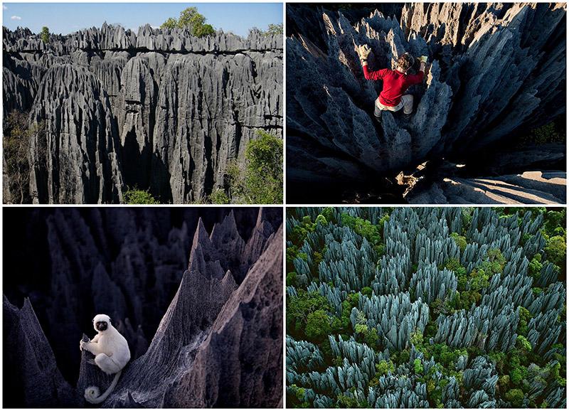 BIGPIC67 Каменный лес на Мадагаскаре