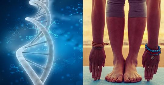 Практика йоги и медитации устраняет повреждение ДНК, которое вызывает болезни и подавленность