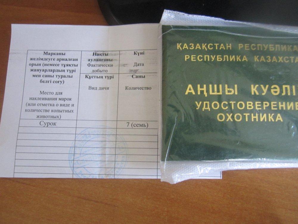 Путь к суркам и путь сурков)))