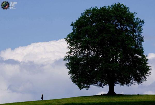 Природа. Люди (24 фото)