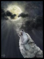 Волчья яма