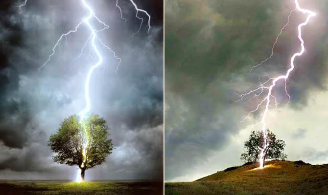 громовая плешь - удар молнии в дерево - Интересные факты о Сверхъестественном и Паранормальном