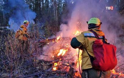 Площадь лесных пожаров на Дальнем Востоке выросла в 1,5 раза