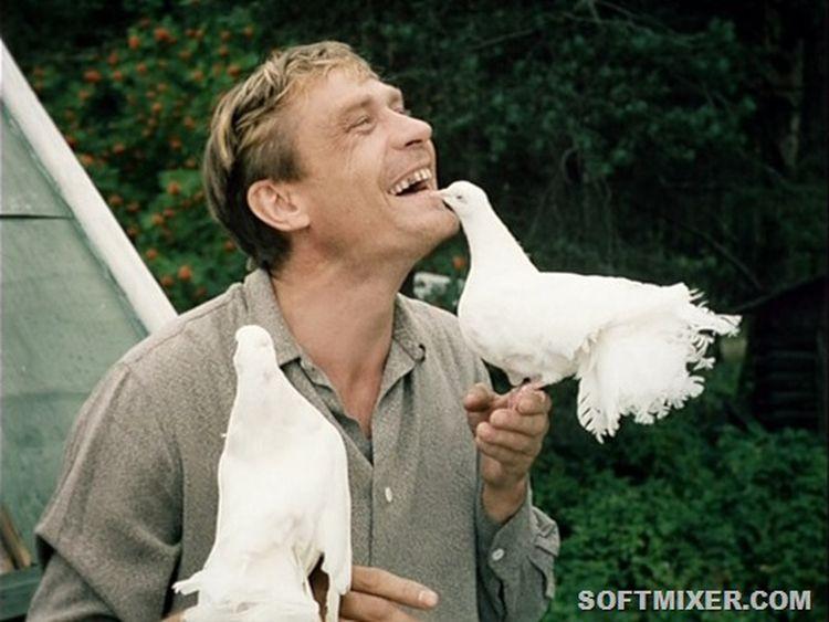"""loveandpigeons02 """"Любовь и голуби"""": детали, факты и редкие кадры из фильма"""