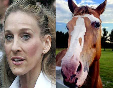 Любовницы с лошадиным лицом