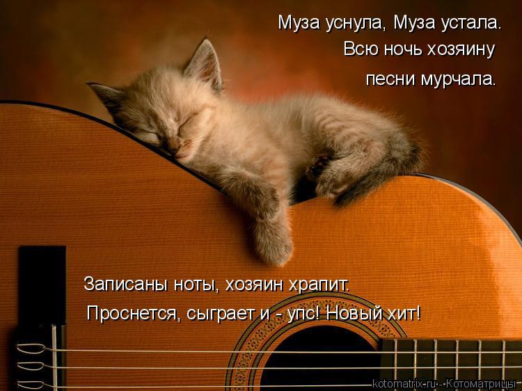 Котоматрица: Муза уснула, Муза устала. Всю ночь хозяину песни мурчала. Записаны ноты, хозяин храпит. Проснется, сыграет и - упс! Новый хит!