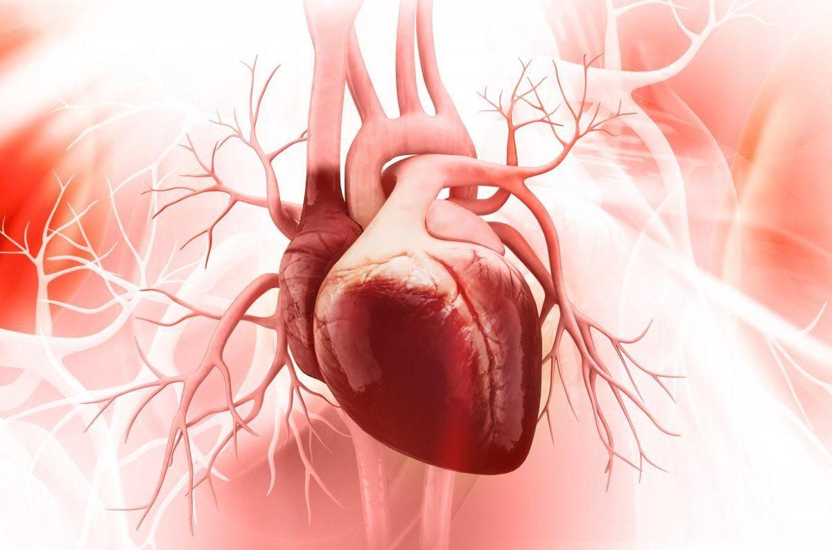 Как самостоятельно проверить здорово ли ваше сердце