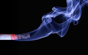 Ученые выявили, что производители сигарет скрывают данные о вредных веществах