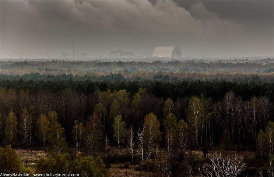 7 мифов о Чернобыле, в котор…
