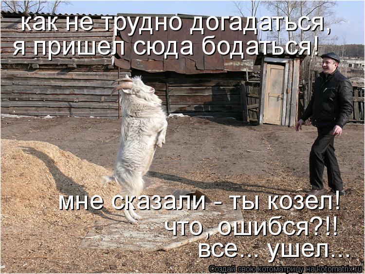 Котоматрица: как не трудно догадаться,  я пришел сюда бодаться! мне сказали - ты козел! что, ошибся?!! все... ушел...