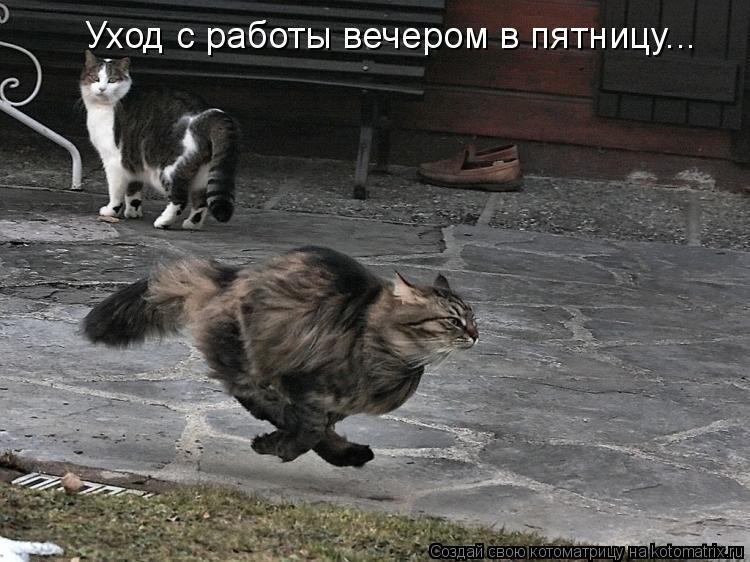 http://mtdata.ru/u26/photo2FE0/20895675754-0/original.jpg