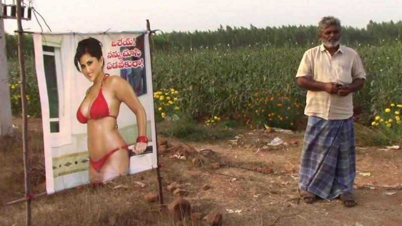 Индийский фермер установил на поле плакат с полуголой порнозвездой для защиты урожая. И это работает
