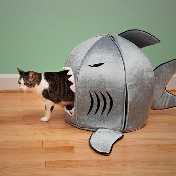 Котодевайсы, от которых ваш котэ будет в восторге Котодевайсы, кот, дизайн