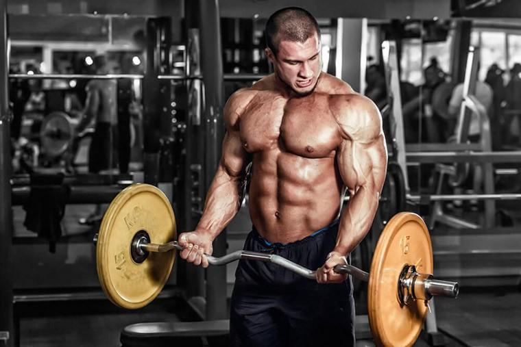 Тренировки для мужчин  Лучшее упражнение для бицепса - подъем штанги на бицепс