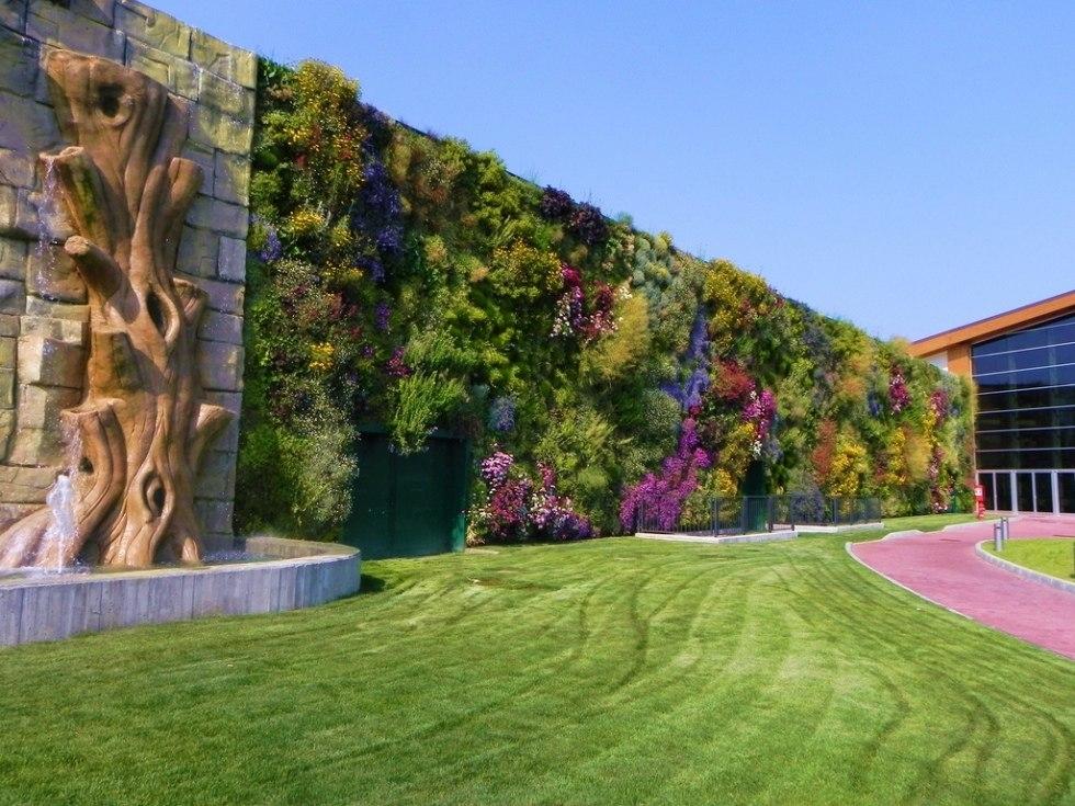 Цветущая стена: вертикальный сад в Россано