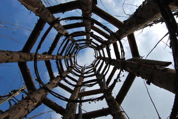 собор из деревьев джулиано маури (10)