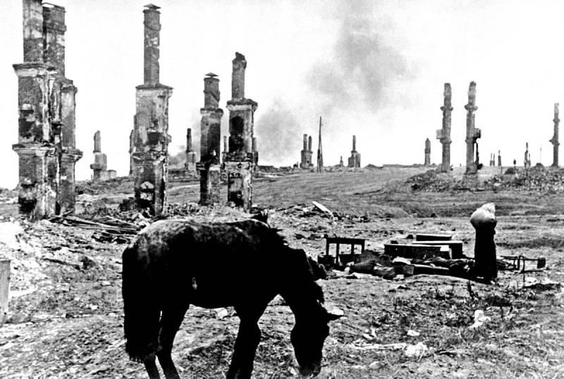 Почему нацисты оставляли после себя лишь выжженную землю