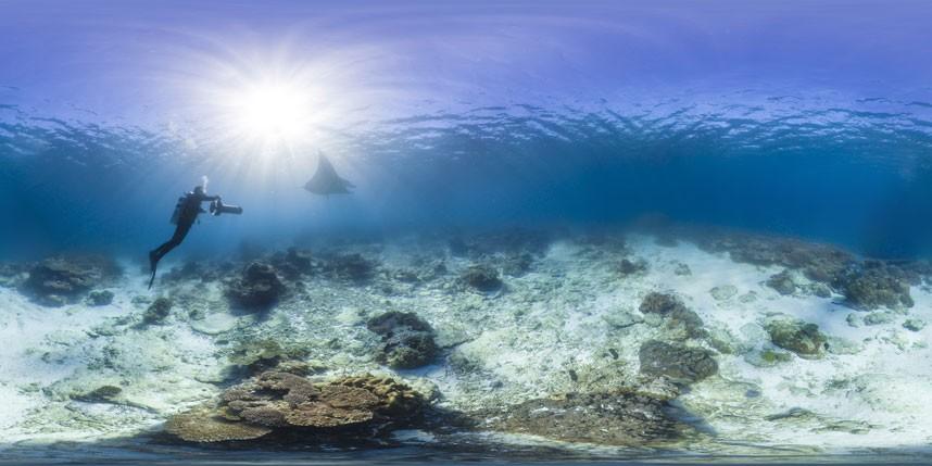 Explore coral reefs 3 Коралловые рифы в фотографиях